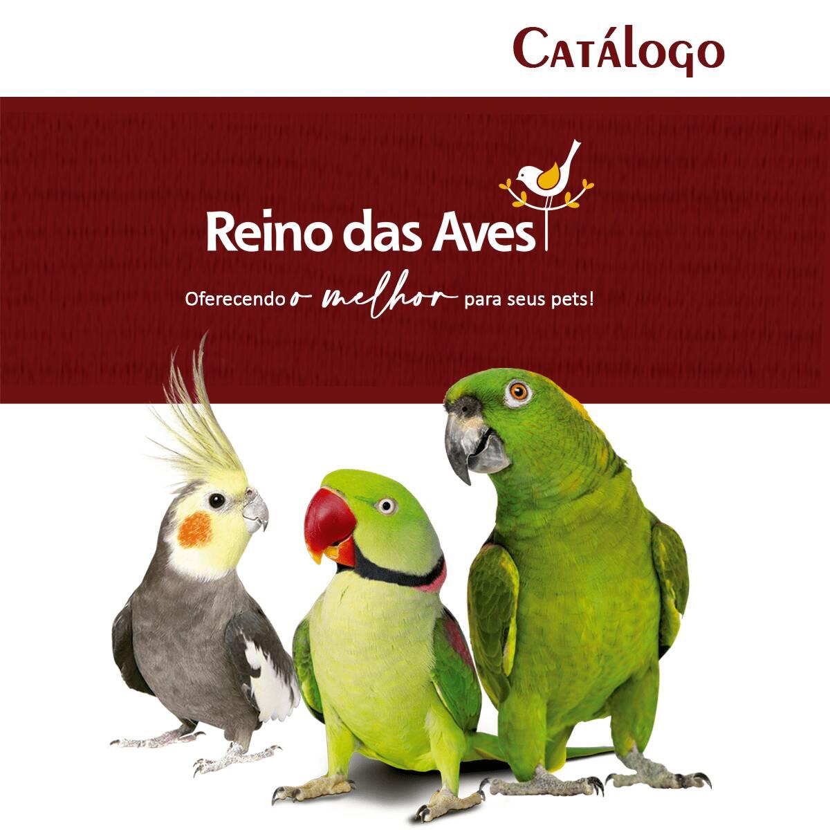 Imagem de capa do card